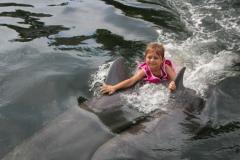 Island Dolphin Care Delphintherapie
